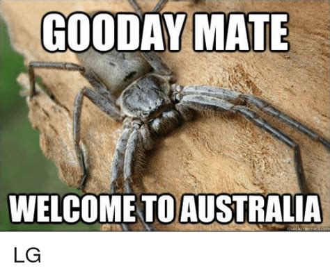 Australia Meme - 25 best memes about welcome to australia meme welcome