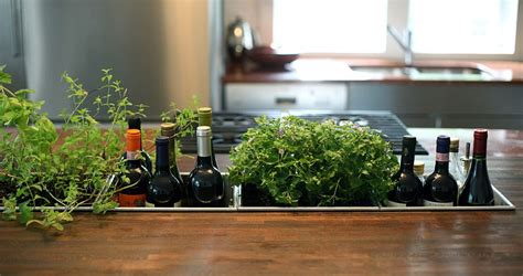 garden in the kitchen 18 creative ideas to grow fresh herbs indoors