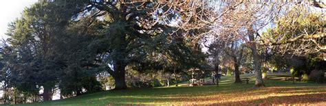 Friends Of Daylesford Wombat Hill Botanic Gardens Wombat Hill Botanic Gardens
