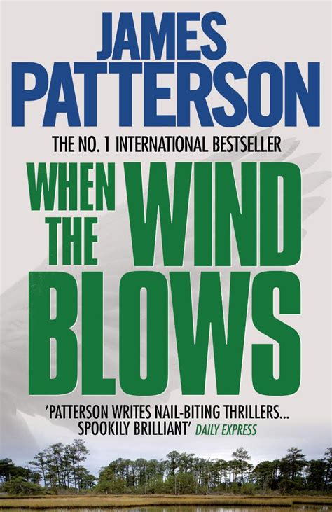 the lake house novel james patterson collection the lake house when the wind blows 2 books set