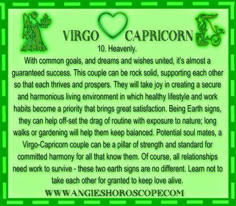 capricorn and virgo in bed funny quotes virgo capricorn quotesgram