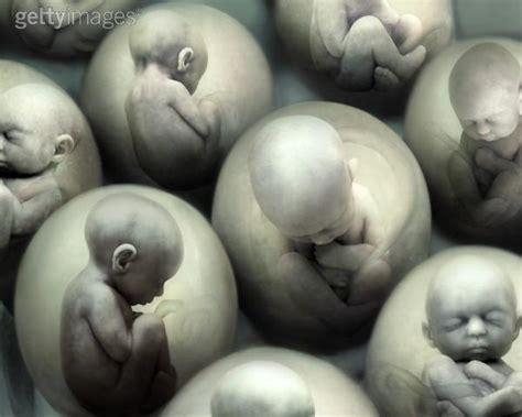imagenes impactantes aborto no mas abortos collage de fotos del aborto