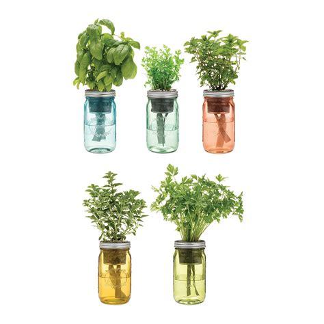 Savings On Self Watering Indoor Herb Garden Planter | self watering mason jar indoor herb garden the green head