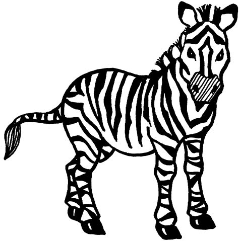 zebra coloring page printable free zebra coloring pages