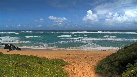 beautiful hawaii beaches see the most beautiful hawaii beaches hd dvd