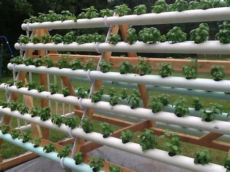 Nft Hidroponik a frame nft hydroponic basil hydroponics