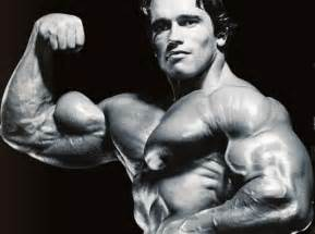 Arm Curl Bench 35 Best Biceps In History