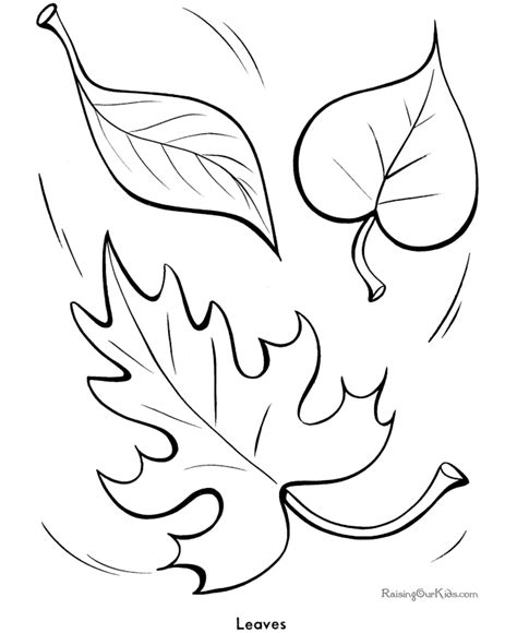 printable colored autumn leaves free coloring pages of leaf outlines
