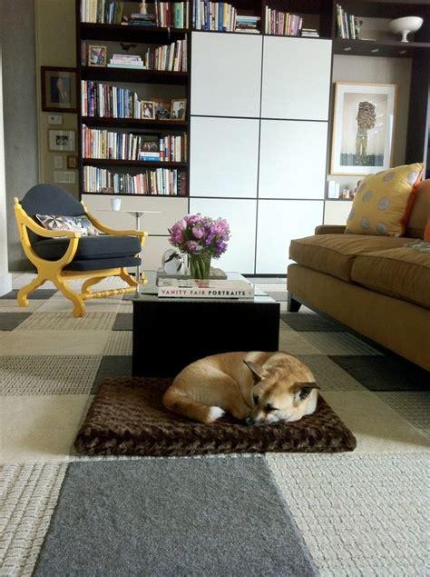 flor carpet squares  pet friendly design  great