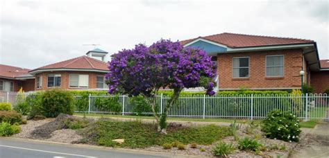 buying department of housing property nsw nz s vital healthcare property trust partners hall prior to buy nsw care facility the weekly