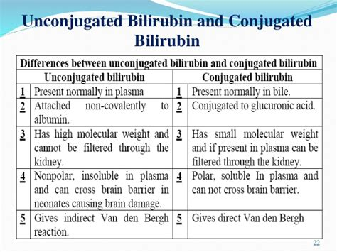 Will Doing Detox Make Bilrubin Levels Increase by Increased Bilirubin In Adults Collage