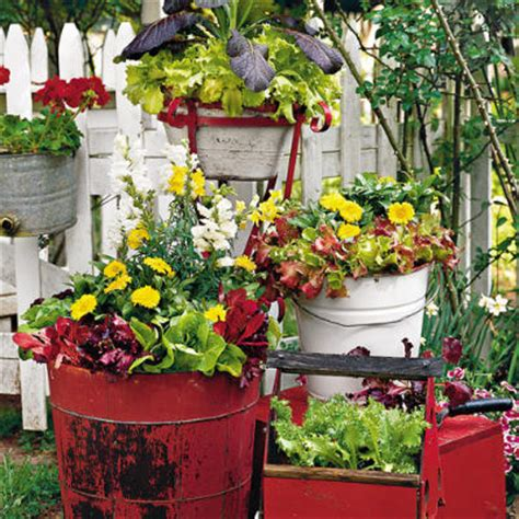 unique container gardening ideas container gardening