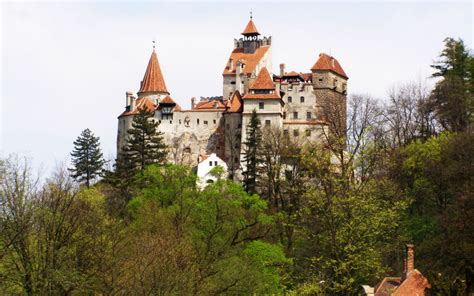 transylvania dracula castle dracula s castle wallpaper wallpapersafari