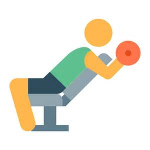 bench press dumbbells bench press with dumbbells icon free at icons8