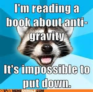 Reading Book Meme - meme monday teenfictionbooks page 3