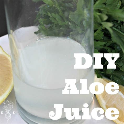Time Aloe Detox Drink Recipe by Aloe Vera Juice Recipe 187 The Seasonal Diet