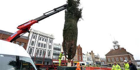 stockton sparkles preparations continue as christmas tree