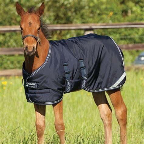 amigo foal turnout rug amigo foal stable turnout rug 200g navy silver redpost equestrian