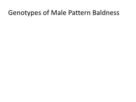 male pattern baldness test human genetic inheritance patterns