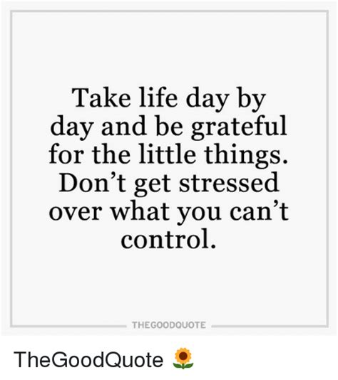 Take Life Day By Day And Be Grateful For The Little Things - 25 best memes about good quotes good quotes memes