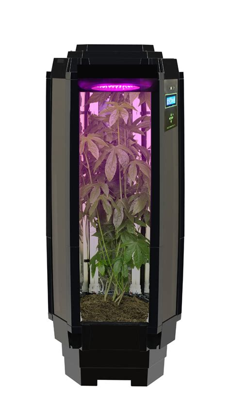 indoor growing phototron   healthy reasons  join