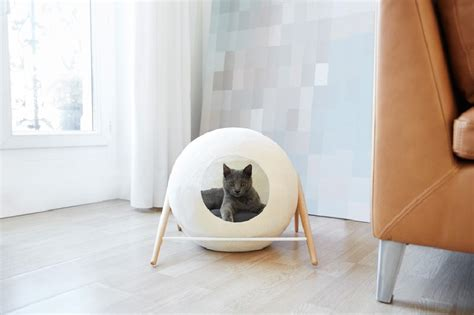 modern cat beds stylish cat beds and cocoons for the discerning pet