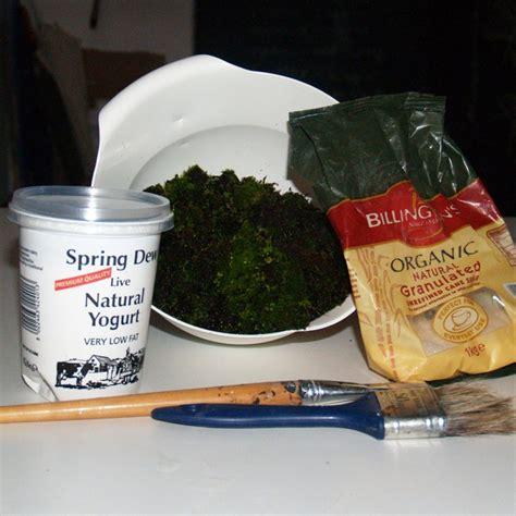 a recipe for moss paint moss graffiti crafty stuff pinterest