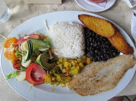 costa rica cookbook learn to cook costa food for newbies books the top 10 things to do and see in costa rica