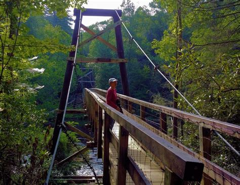 swinging bridge over toccoa river 319 best georgia glimpses images on pinterest