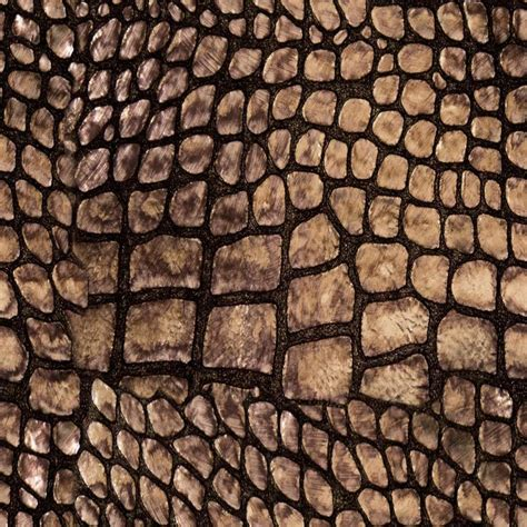 alligator skin upholstery 17 best images about exotic skins and textures on