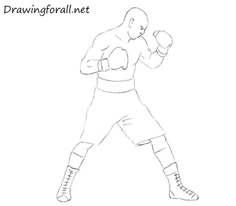 how to a boxer how to draw a boxer for beginners drawingforall net