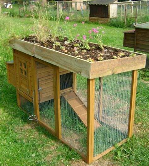 small backyard chicken coop plans free how to build a pallet chicken coop 20 diy plans guide