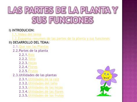 Resumen Y Sus Partes by Las Partes De La Planta Y Sus Funciones