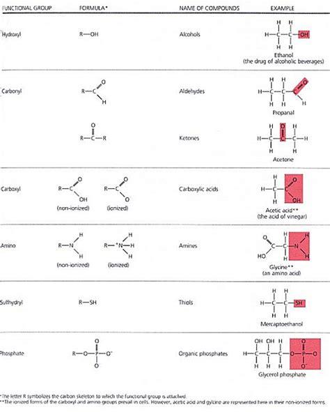 carbohydrates quiz pdf mcdbiology chapter 2 biochemistry
