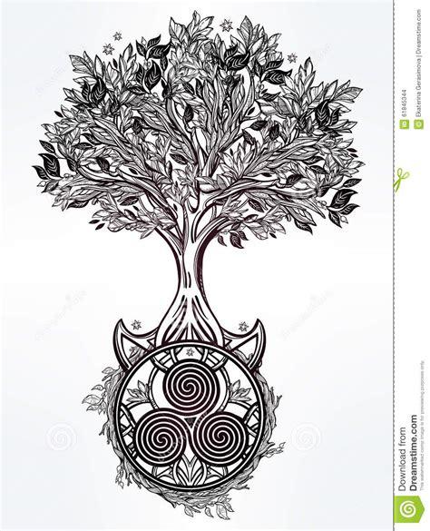 arbre celtique d illustration de la vie illustration de