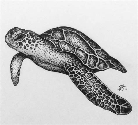 sea turtle tattoo drawing clipartxtras