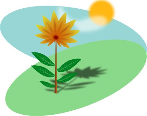 Easy Plants Living Plants Clipart