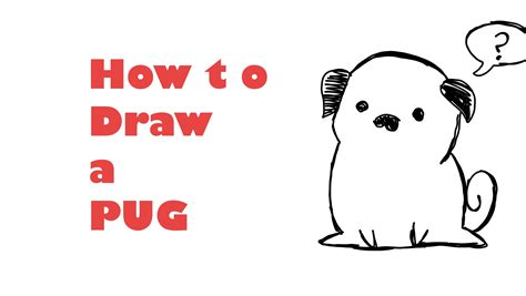 how to draw a pug for how to draw a pug