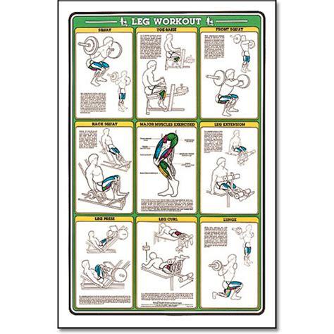leg workout diagram legs workout chart www pixshark images galleries