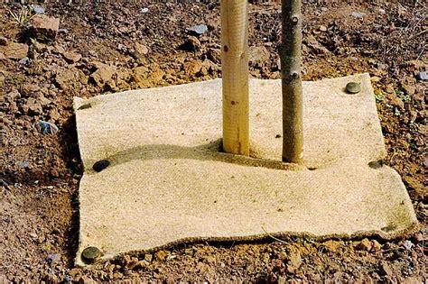 Mulch Mats For Trees by Buy Biodegradable Mulch Mats Ashridge Trees