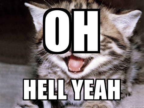 Happy Kitten Meme - oh hell yeah happy kitten meme generator