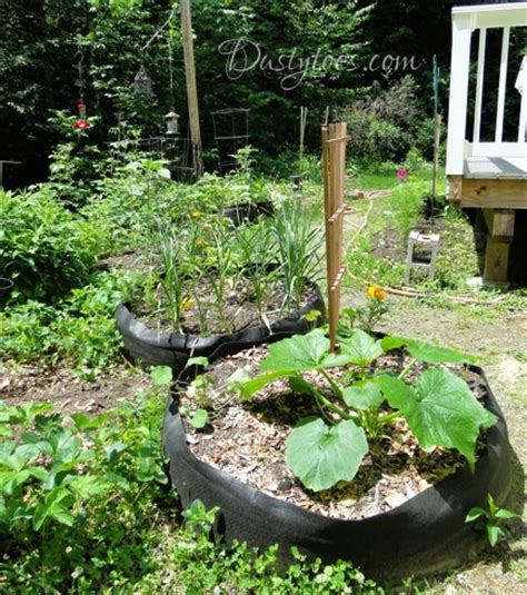 Fabric Raised Garden Beds by Experience With Raised Bed Gardens Using Fabric Pots