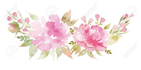 peony clipart watercolor clipart peony vector pencil and in color