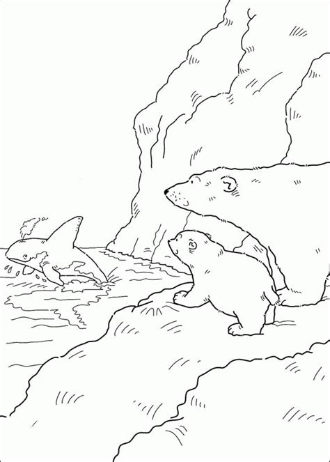 Little Polar Bear Coloring Pages Coloringpagesabc Com Polar Coloring Pages