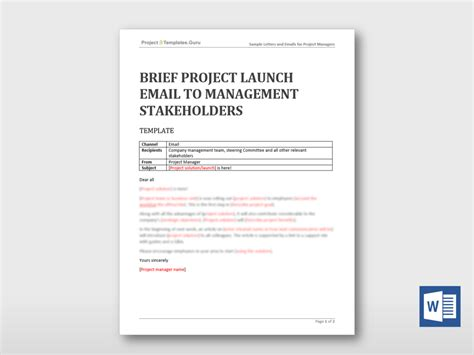 launch email template brief project launch email to management stakeholders