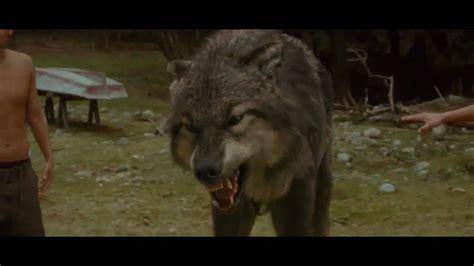 Saga Of The Wolf the twilight saga new moon featurette meet the wolf
