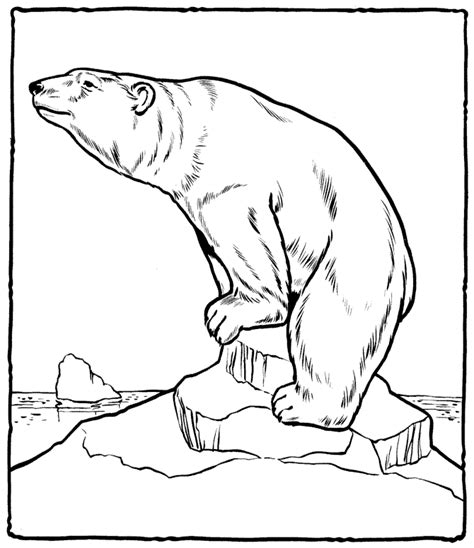 Polar Bear Coloring Pages New Calendar Template Site Polar Coloring Pages