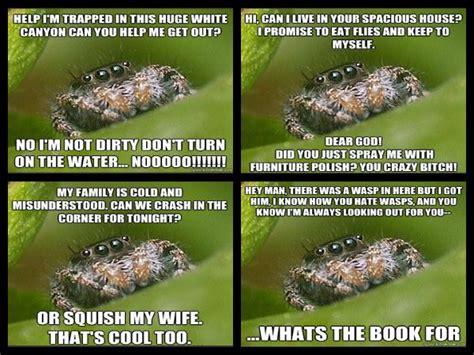 Misunderstood Spider Meme - misunderstood spider hilarity ensues pinterest