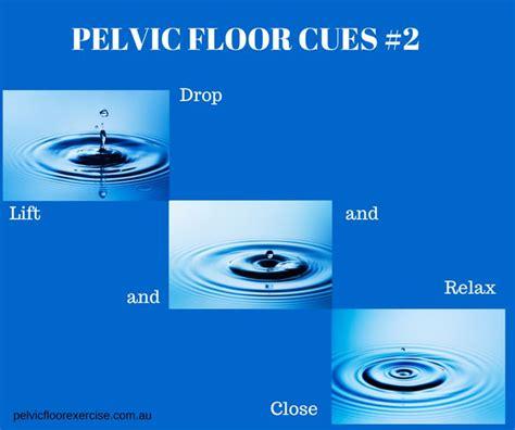 Pelvic Floor Drop by 1000 Images About Pelvic Floor Tips By Pelvic Floor