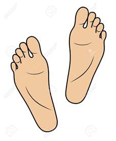 clipart sole soles clipart clipground